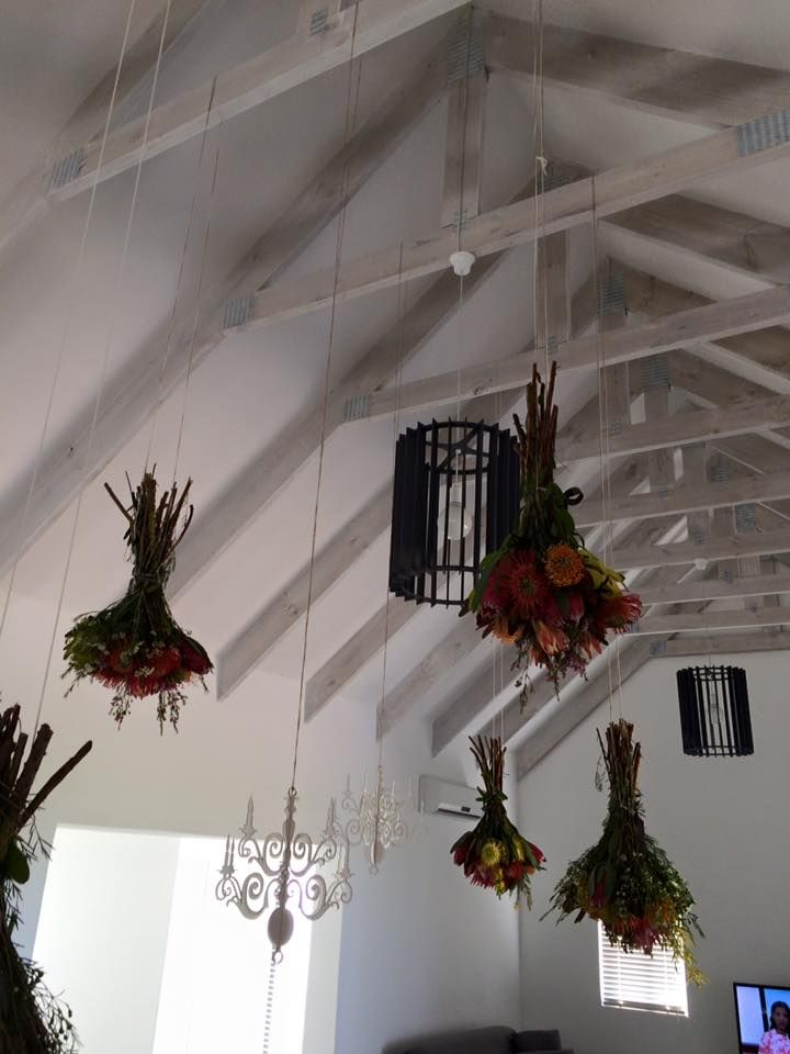 A2 Studio Laser Cut LampShades and Décor - Hanging Proteas