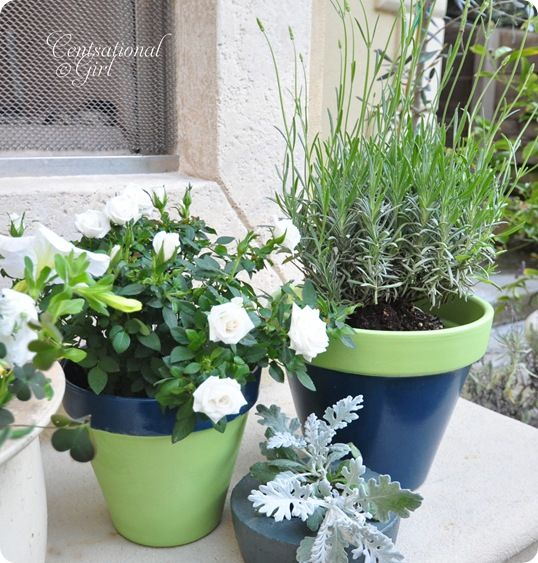 """#springintothedream  Front Porch Inspiration:  Painted Terracotta Pots.  Blue and green painted planters with plants thriving ... I should have labeled this """"in my dreams"""" ..."""