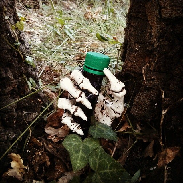 Apparently you'll have to pry this #geocache from his cold dead hands.  ;)  (pinned from websta to Cool & Creative Micro Geocaches - pinterest.com/islandbuttons/cool-creative-micro-geocaches/)
