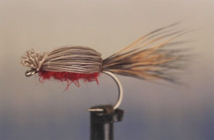 "The Devil Bug (known by more devout folk as the ""Doodle Bug"") was originally designed by Orley C. Tuttle in the second decade of the 1900s as a beetle imitation, with which he caught smallmouth bass on. . .Read More  »"