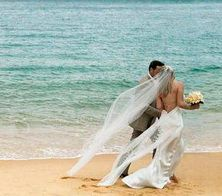 If your dream is to do your wedding on the beach then here are some tips for a beach wedding from AffairNet - http://www.affairnet.com/tips-for-planning-a-beach-wedding/