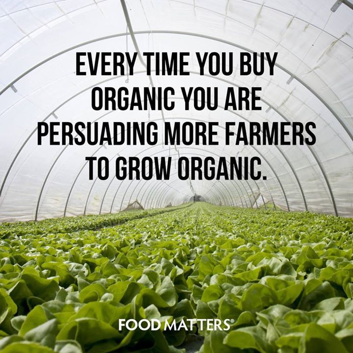 It's just one small thing that can contributing to a bigger difference!  www.foodmatters.tv ‪#foodmatters‬ #FMquotes‬