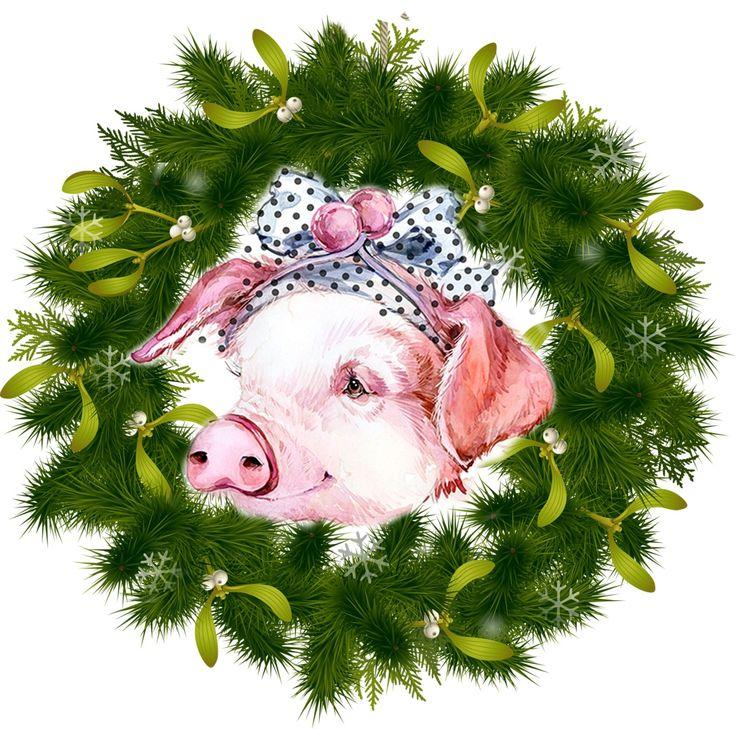 Картинки открытки на новый год свинки, летием