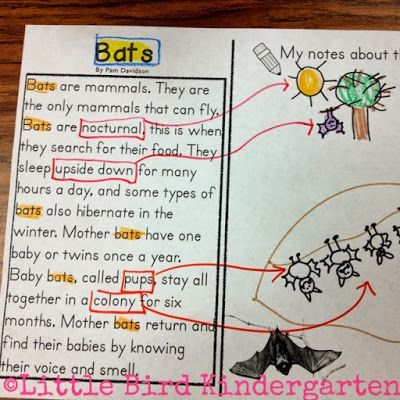 Close Reading in kindergarten, annotations.....Beginners welcome! No Experience necessary! First graders welcome too!