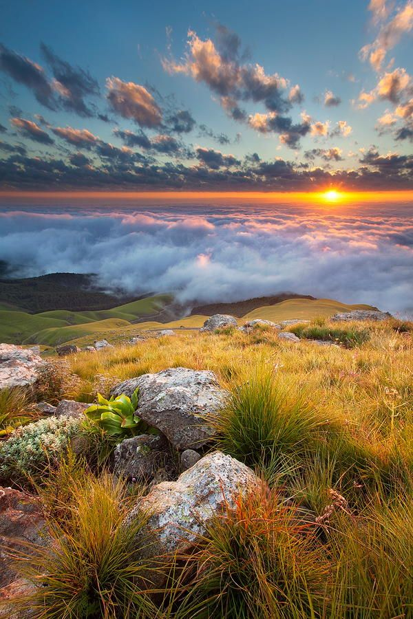 """Where the sun rises"""". Taken from the top of the Longtom Pass in Mpumalanga, South Africa."""