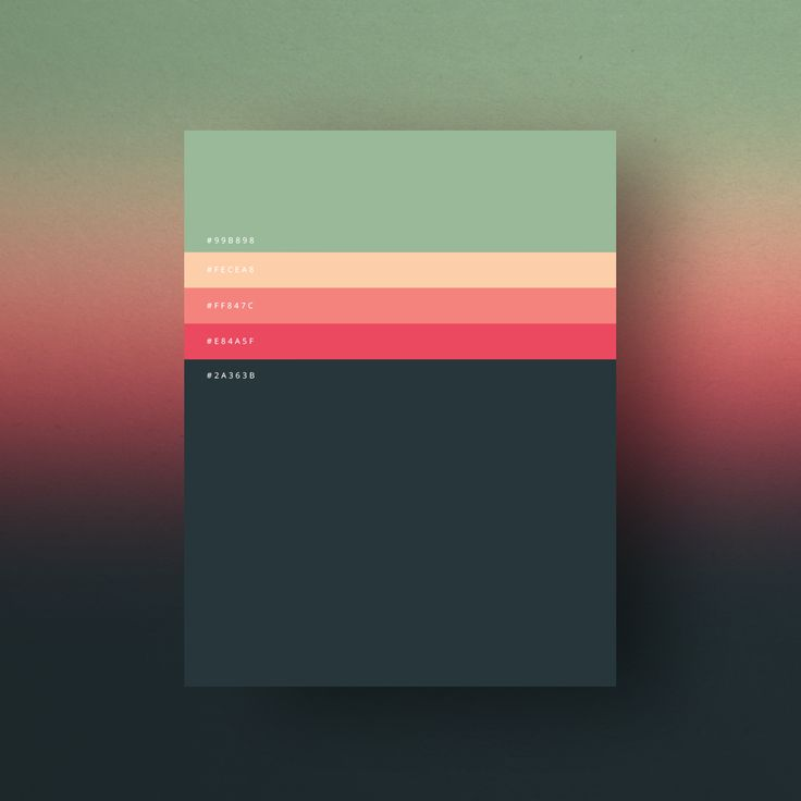 Minimalist Color palette posters collection