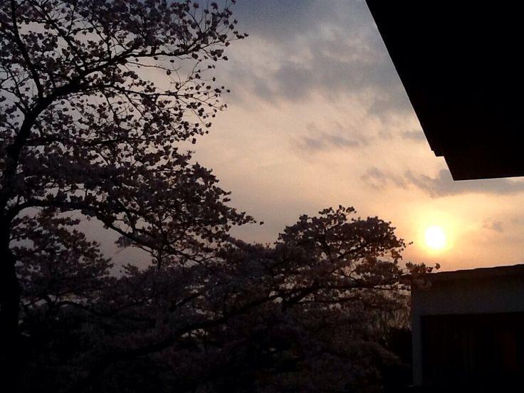 Sunset in Spring...