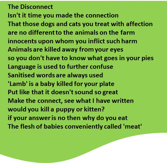 The different perspectives of people on animals and animal rights