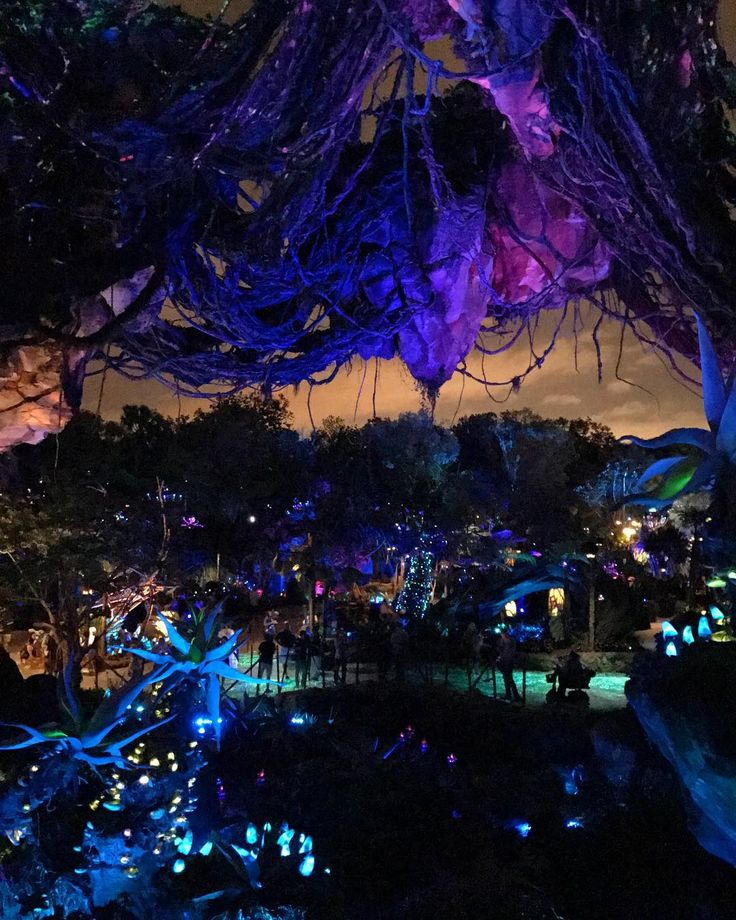 A Look Over Pandora At Night From The Bridge On Way To Flight Of
