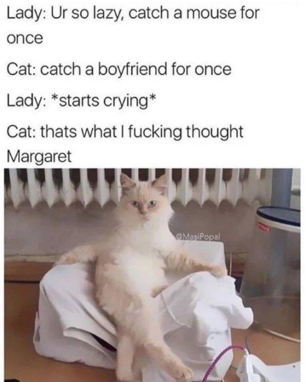 Petty Memes That Ll Make You Evil Laugh 30 Photos Super Funny Memes Funny Animal Memes Funny Animal Photos