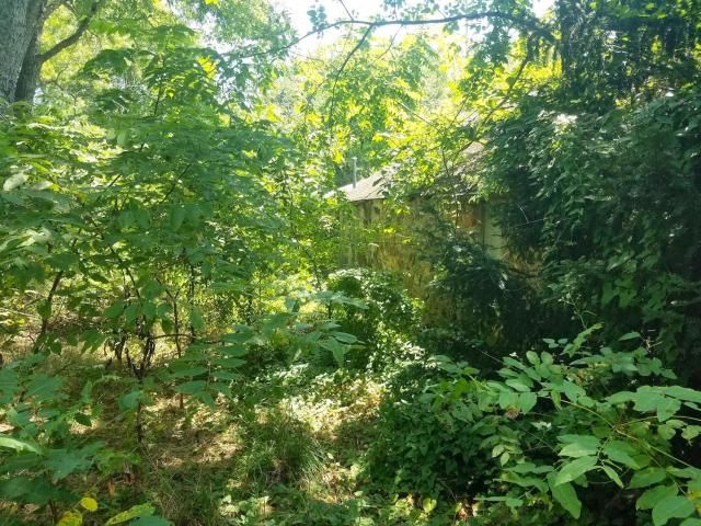 19 acres m/l for sale located just 3 miles from West Plains, MO City limits in Howell County. This property is in the ideal location in the Southern Missouri Ozarks, close to the amenities of West Plains, but far enough out for privacy. This farm has been abandoned for several years, but has serious potential. Some features of this property are electric, 460 ft. well, county road frontage, great hunting, and decent timber. Priced @ 59,500