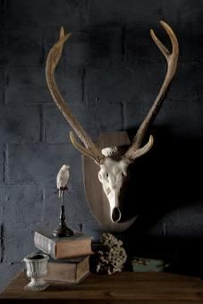 Deer Antlers Head. A Block and Chisel Product.