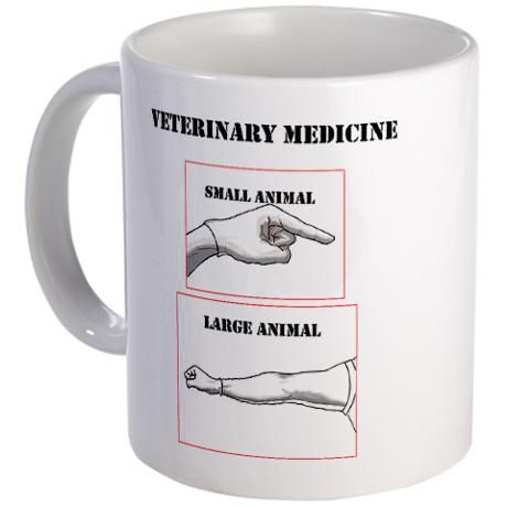 Veterinary Medicine get about me