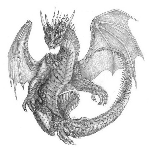 17 best ideas about dragon drawings on pinterest dragon for Cool fantasy drawings