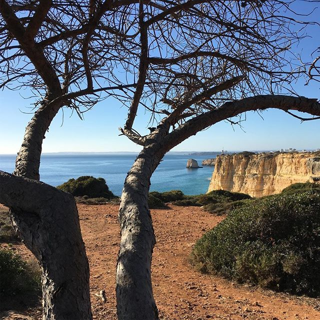We are back from our #winter break! Hello from the #sunny #Algarve Portugal! #Book your stay with us https://myholiday.pt
