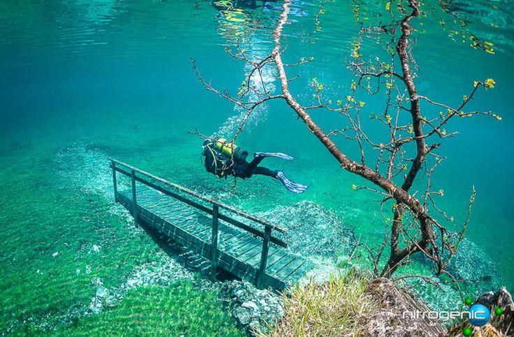 森でダイビング?毎年、春になると水の下に沈んでしまう公園がオーストリアに存在した・・・ ホーホシュヴァープ山の麓に位置する、トラゲス群立公園。春、公園内のグリーン・レイクと呼ばれる湖には山に積もった雪解け水が流れ込む。 5月になると、湖の水位は急上昇。その高さは地面から10~12mにまで昇る