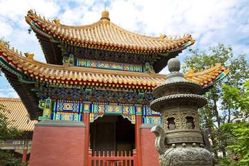 Beijing City Coach Tour: Hutongs, Beijing Zoo and Lama Temple - Beijing | Viator