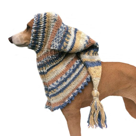 Mustard and Blue Small Greyhound Snood Dog Hat lurcher, Italian greyhound, whippet, puppy clothing, dog clothes, dog snood, galgo pixie,