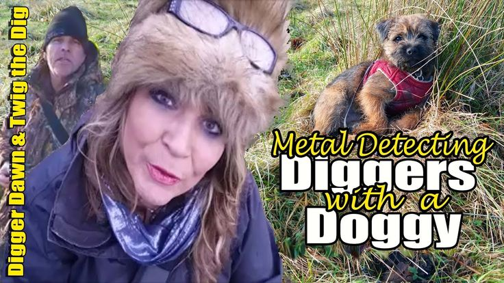Digger Dawn & Twig the Dig - Metal detecting Diggers with a Dog