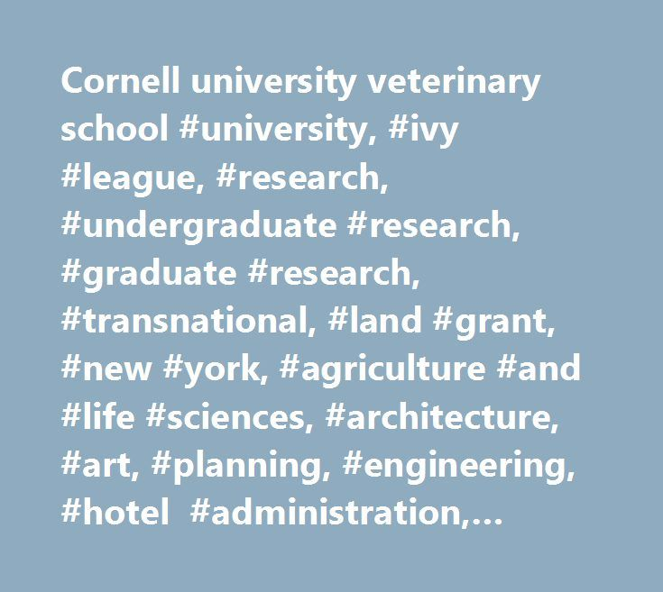 Cornell university veterinary school #university, #ivy #league, #research, #undergraduate #research, #graduate #research, #transnational, #land #grant, #new #york, #agriculture #and #life #sciences, #architecture, #art, #planning, #engineering, #hotel #administration, #human #ecology, #industrial #and #labor #relations, #law, #business #management, #medicine, #pre-med, #veterinary #medicine, #vet #school…