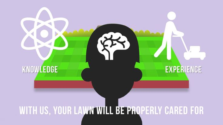 Lawn Care Animated