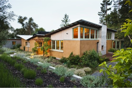 Skillion roof + mixed materials