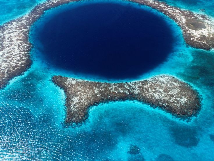 The Belize barrier reef is the largest barrier reef in the northern hemisphere - an important and sadly endangered marine environment.
