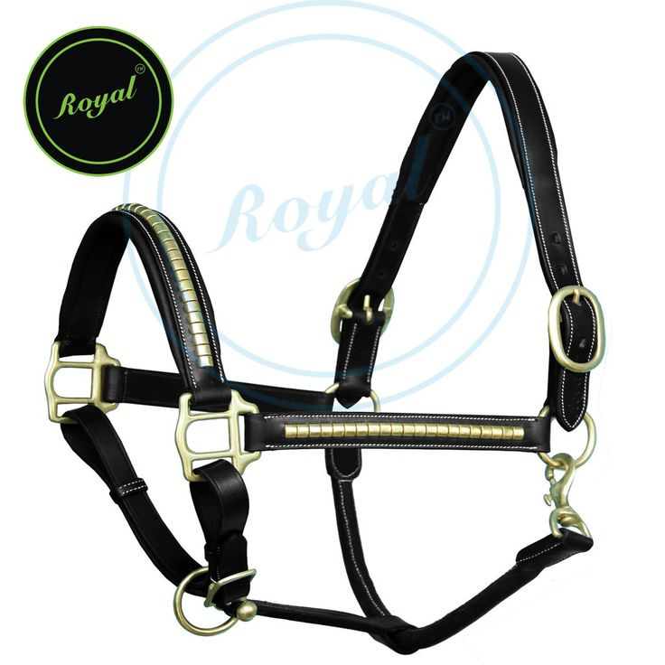 Upto 20% Off Royal Brass Clincher #Halter with Brass Buckles