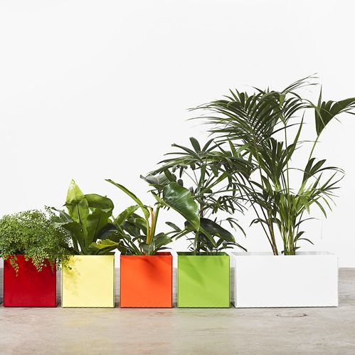 Box Planter | Tait
