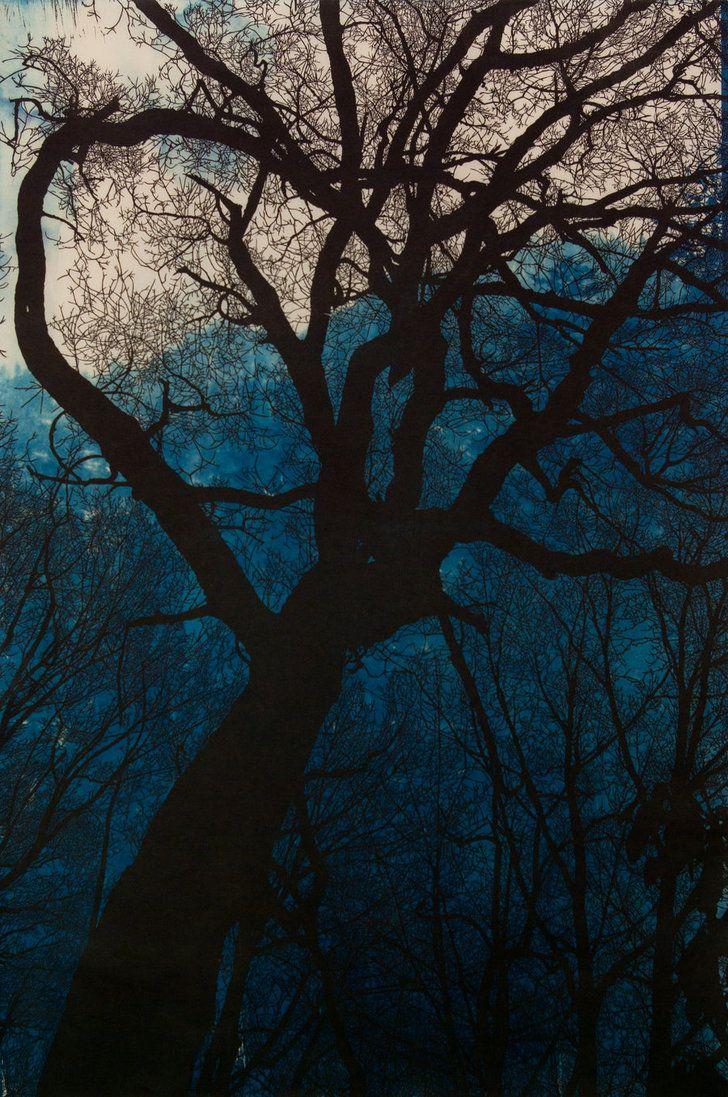 Night Descends with Cyanotype by Hannah Skoonberg. www.skoonberg.com Tags: Linocut, Cut, Print, Linoleum, Lino, Carving, Block, Woodcut, Helen Elstone, Nightime, Trees, Silhouette.
