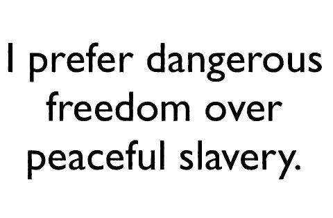 .Words Of Wisdom, Danger Freedom, Truths Quotes, Peace Slavery, America Head, Freedom Rings, True Freedom, Freedom Prece, Inspiration Quotes