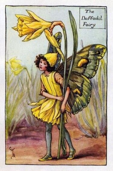 Daffodil Flower Fairy Vintage Print by Cicely Mary Barker. first published in London by Blackie, 1923 in Flower Fairies of the Spring.