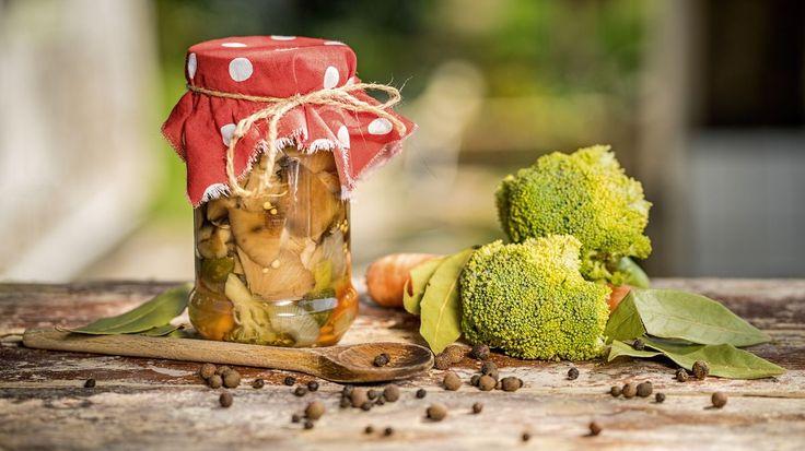 Před pár dny jsme oslavili svátek svatého Václava, což je v houbařském kalendáři důležité datum – právě na přelomu září a října vrcholí sezona sběru hub václavek. Ty se skvěle hodí na zavařování, a pokud jste to ještě nezkoušeli, je na čase!