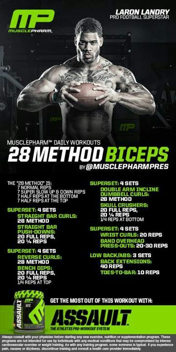 Bicep and tricep wokout using the 28 method. Same method Arnold used for gains.