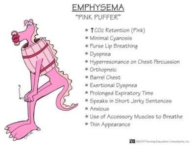 COPD- Emphysema  Pink puffer