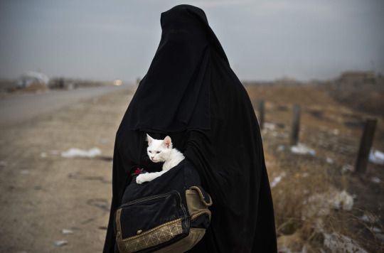 A displaced Iraqi woman holds her cat, Lulu, while waiting for transport in the Iraqi Kurdish checkpoint village of Shaqouli after she fled her home with her children on November 10, 2016. (Odd Andersen/AFP/Getty Images)