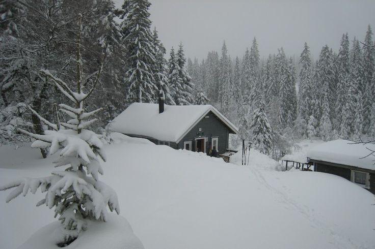 Snellingen. Heel oud hutje op de Nordmarka. Samen met de kinderen een trektocht gemaakt langs deze hut winter 2015.