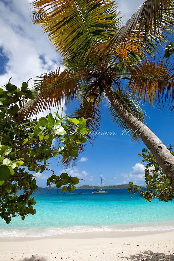 Honeymoon Beach St John US Virgin Islands