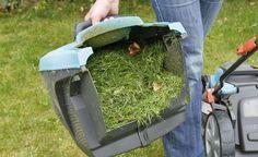 Beim Rasenmähen fällt jede Menge Mähgut an und der Fangkorb muss mehrmals geleert werden