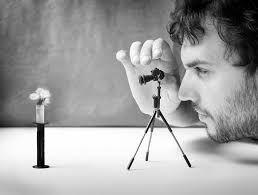 Image result for micro photography