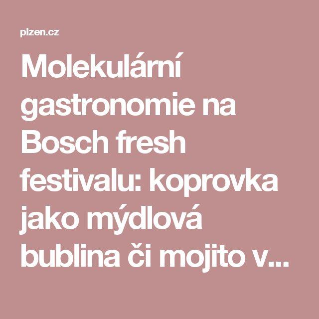 Molekulární gastronomie na Bosch fresh festivalu: koprovka  jako mýdlová bublina či mojito ve rtěnce | Plzeň.cz
