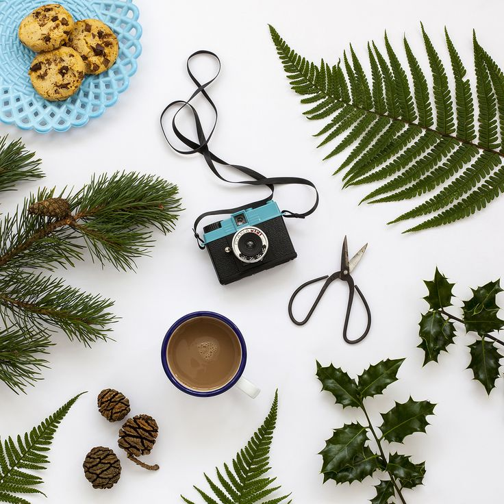 How to Take Flat Lay Photographs