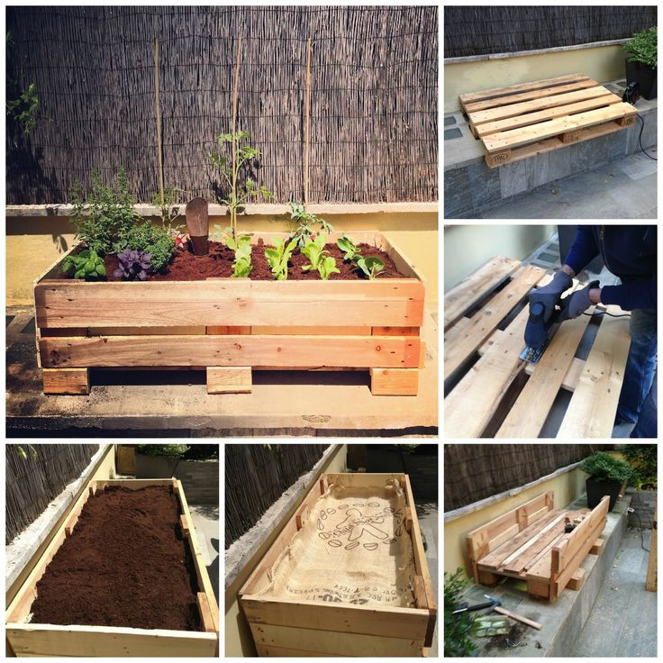 Pallet raised beds. I see these is dumpsters all the time.