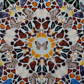 Damien Hirst x Alexander McQueen butterfly scarf
