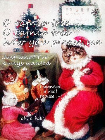 Nice Funny Christmas Web Funny Christmas Quote (359×