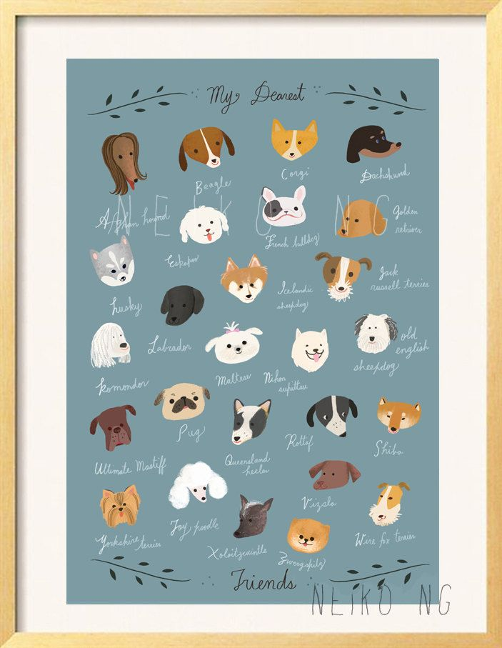 ABC  Dog Breeds Poster, 8 X10 , Dog Breed Names Begins at A to Z, dogs illustration art print. $18.00, via Etsy.