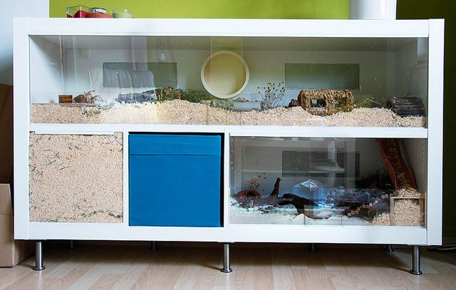 Awesome DIY hamster cage. Think something similar might work for the rats!