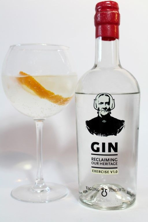 Wagging Finger Gin Exercise V1.0 - Dutch Gin made in Deventer!