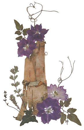 pressed flowers   bark with larkspur