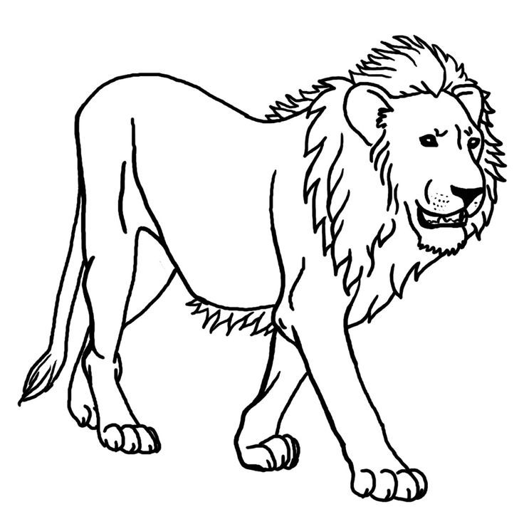 Big Coloring Pages Of Animals Animals Of Africa Clip Art For Teachers Parents Students And The Lion Coloring Pages Lion Pictures Animal Coloring Pages